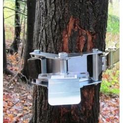 Support d'ancrage de treuil pour arbres avec courroie