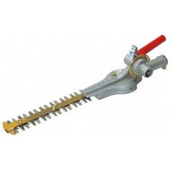 Taille-haies orientable EH 25